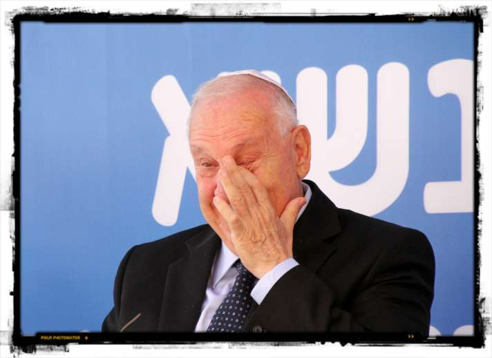 resized_006rivlin